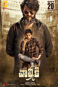 Valmiki (Telugu with English subtitles) Poster