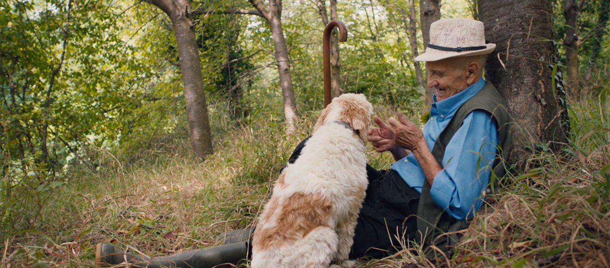 Why The Truffle Hunters Could Be Your Best Christmas Present Section3Image