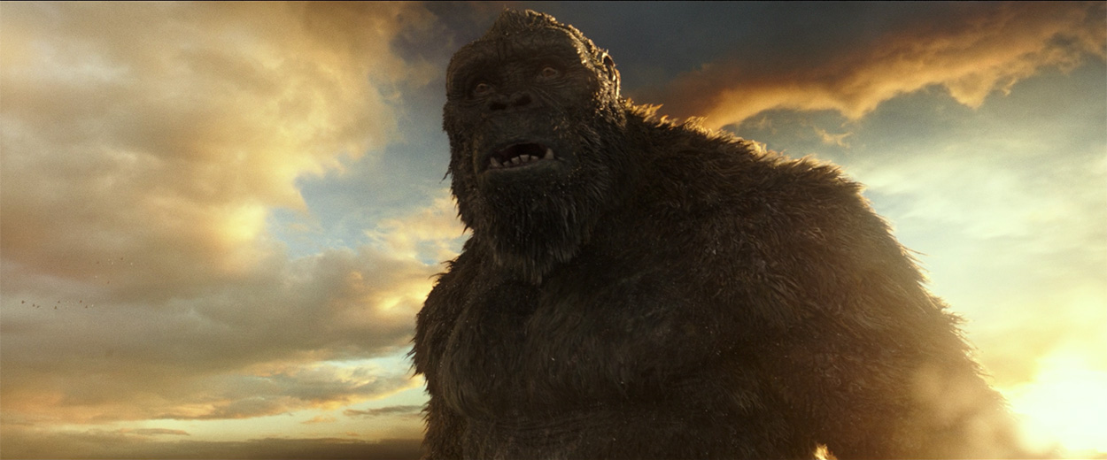 Godzilla vs. Kong: Everything You Need to Know Section7Image