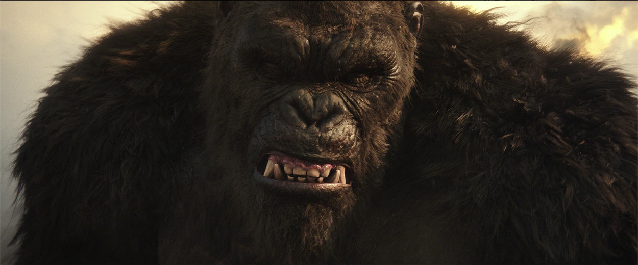Godzilla vs. Kong: Everything You Need to Know Section6Image